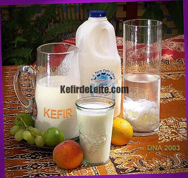 Kefir – um Probiótico Complexo