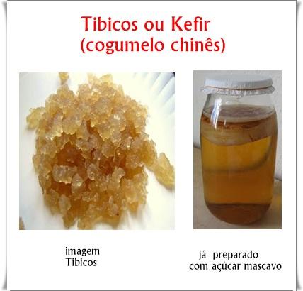 Tibicos Kefir de Água ou Cogumelo Chinês